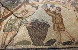 greco-romain vin